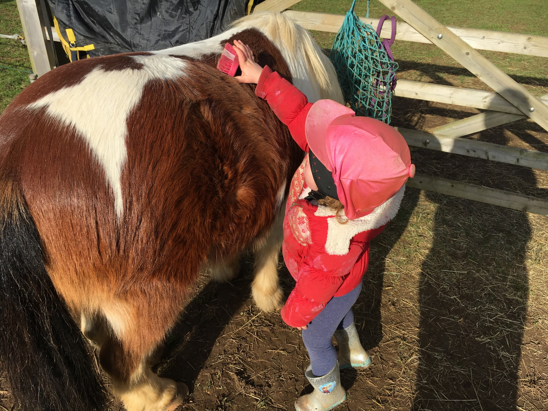 Child & Pony bonding time, Finding the love before communication